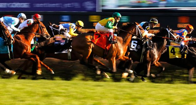 2012 Breeders Cup Juvenile Fillies Turf Developing Patterns