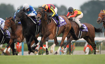 Another Triple Crown Winner For Japan