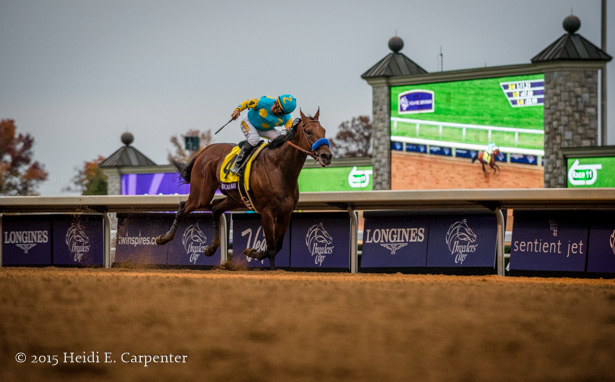 Bc In Photos American Pharoah Horse Of A Lifetime