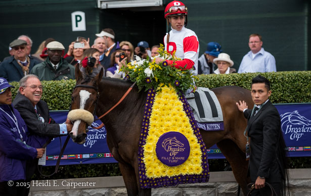 The Breeders Cup In Photos Saturday Horse Racing Nation