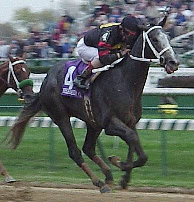 Does Mucho Macho Man Have The Stamina