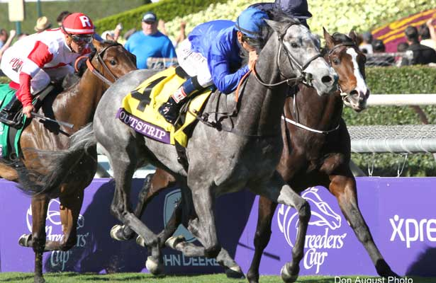Keys To The 2015 Breeders Cup Juvenile Turf Horse