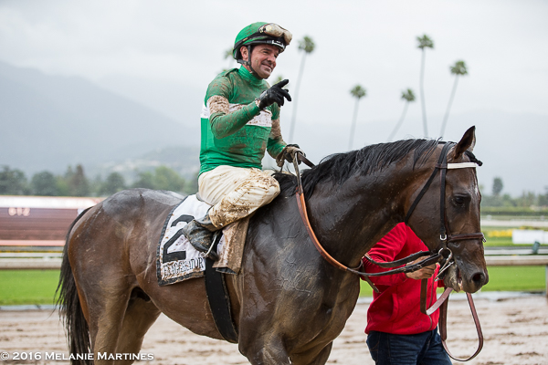 Exaggerator And The Santa Anita Derby In Photos