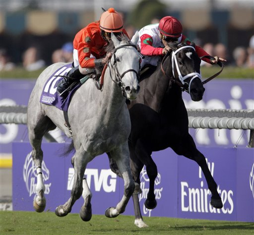 2012 Breeders Cup Juvenile Fillies Turf Developing
